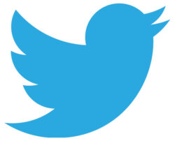 Please follow our Twitter account!